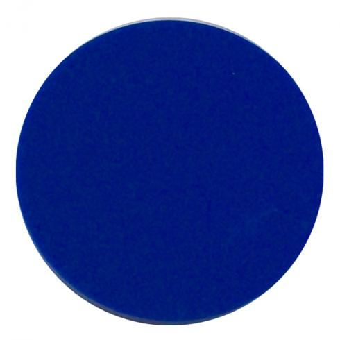 39021300 plastic token blue 0